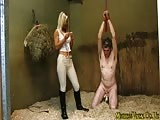 Pegging in the barn