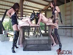Slave's pegging punishment day